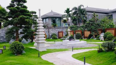 Top 99 Cây bóng mát trồng xung quanh sân vườn Biệt Thự đẹp 2021