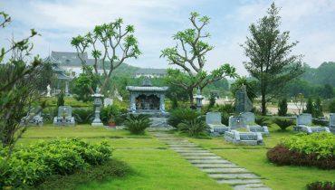 20 Loại cây trồng ở ngoài lăng mộ gia tiên theo phong thủy